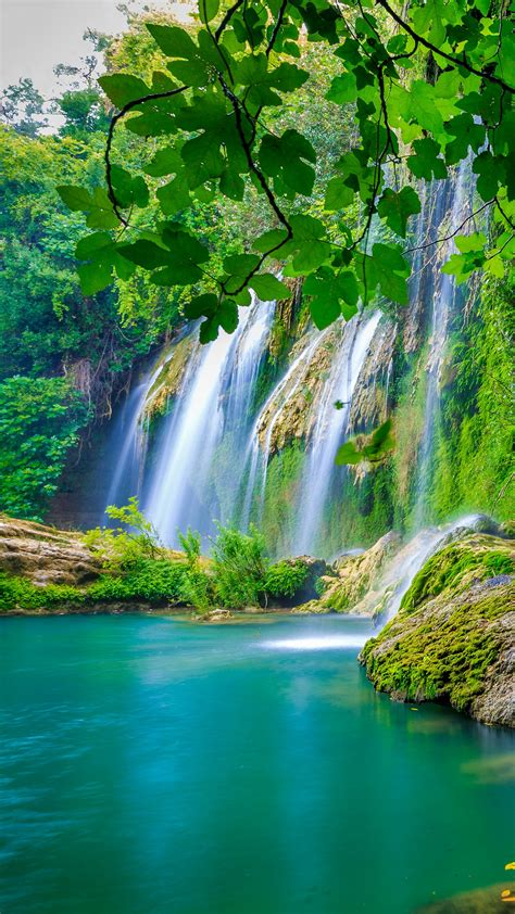 Wallpaper Tropical forest, Waterfall, HD, 4K, Nature