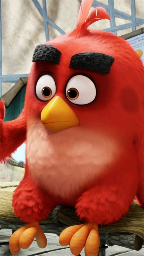 Wallpaper Angry Birds Movie, red, Best Animation Movies of