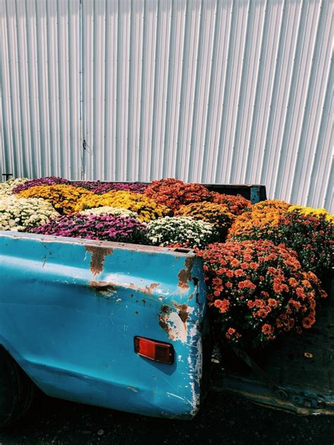 #tunblr #flowers #floral #trucks #country #aesthetic #